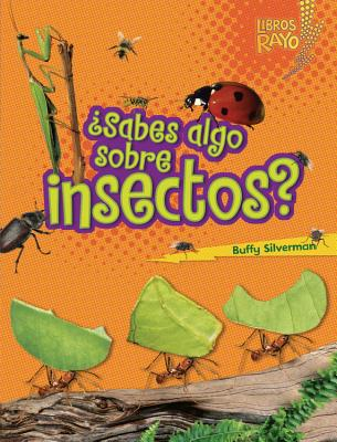 +Sabes algo sobre insectos?/ Do You Know about Insects? By Silverman, Buffy